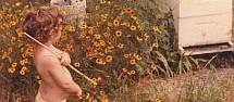 Local Honey and Pollen . Com