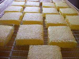 Pieces of honeycomb ready to put in containers